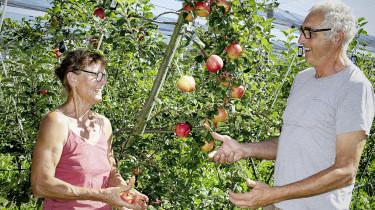 In Mostindien Sieht Es Aus Wie Im Garten Eden Reformiert Info